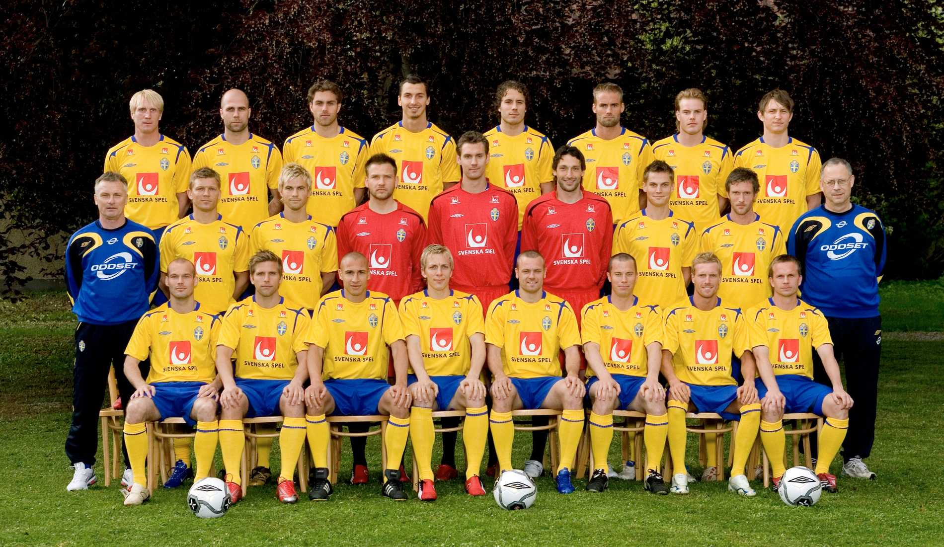 Sveriges lag i VM 2006.