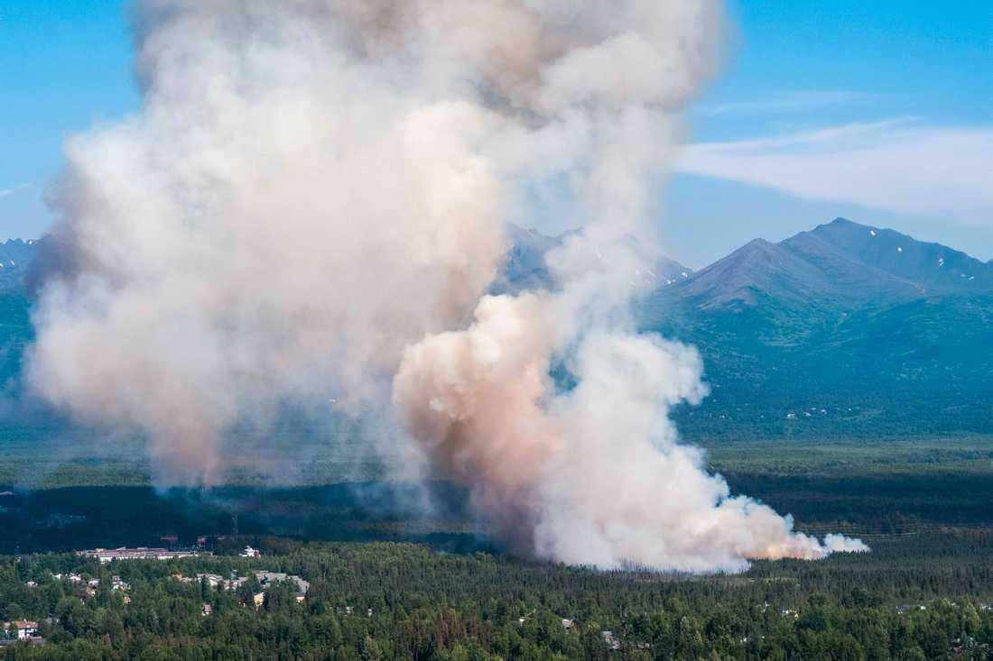 Skogsbränder i närheten av Anchorage, Alaska.