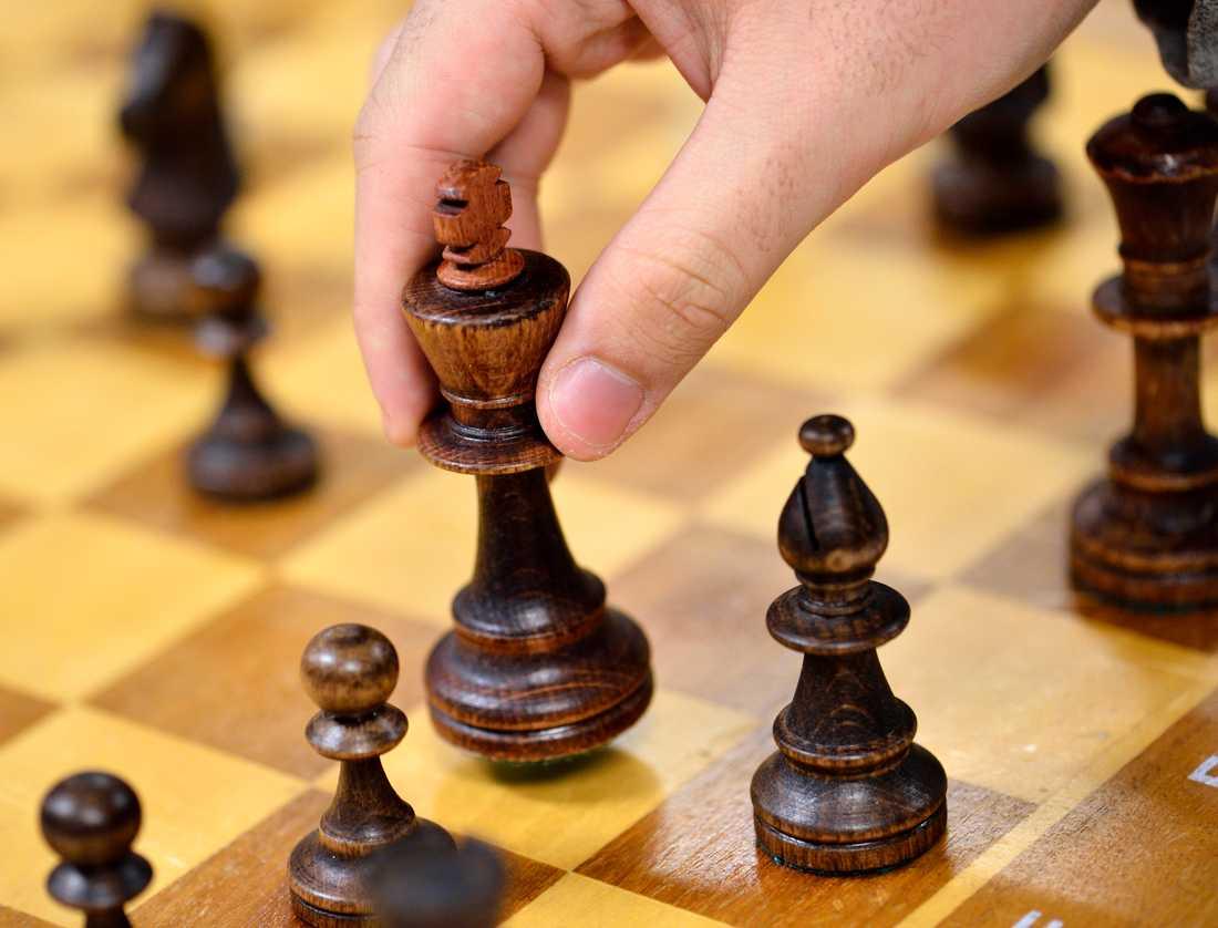 Grandmaster Igors Rausis avslutar nu sin karriär efter en bild där han använder sin telefon på toaletten mitt under en schackturnering har dykt upp.