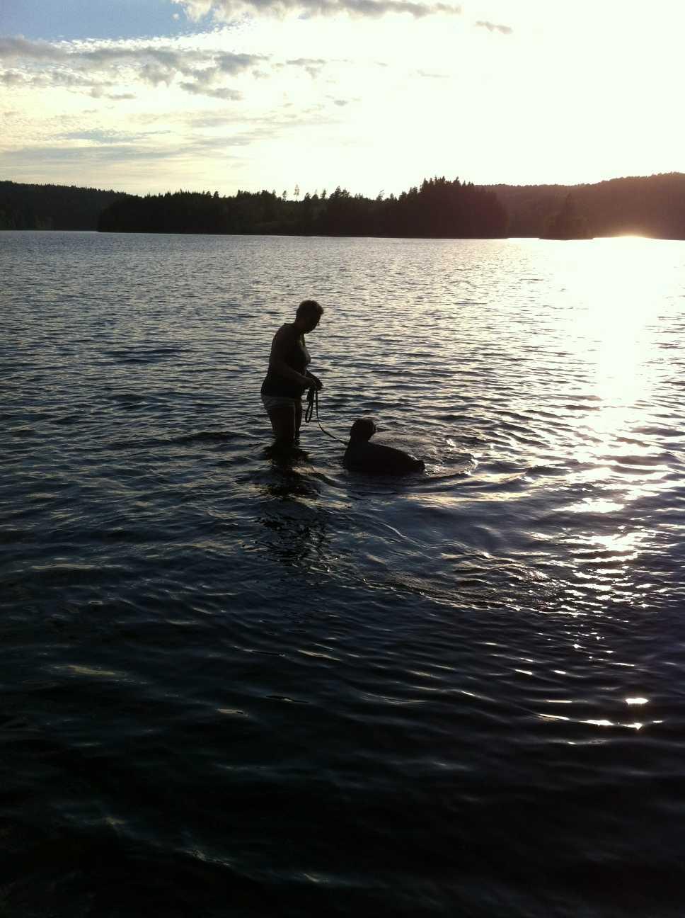 Bad med vår hund Rambo