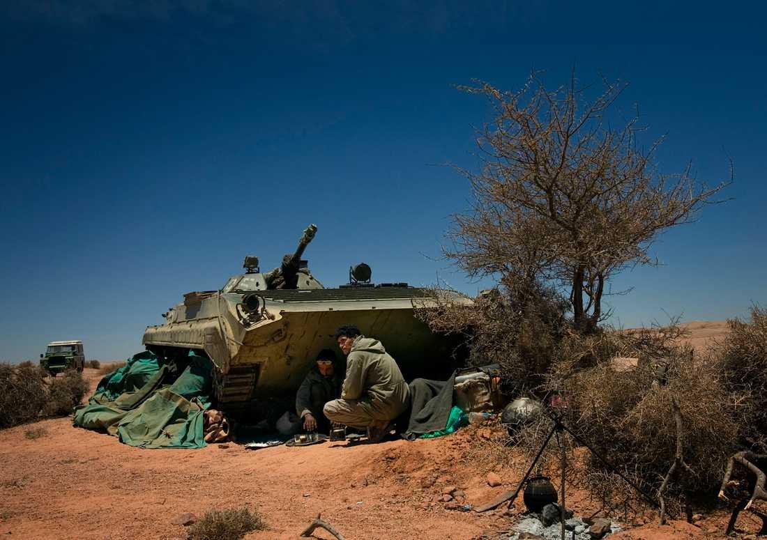 Polisariosoldater tar en tepaus i Tifariti, nordöstra Västsahara. Arkivbild.