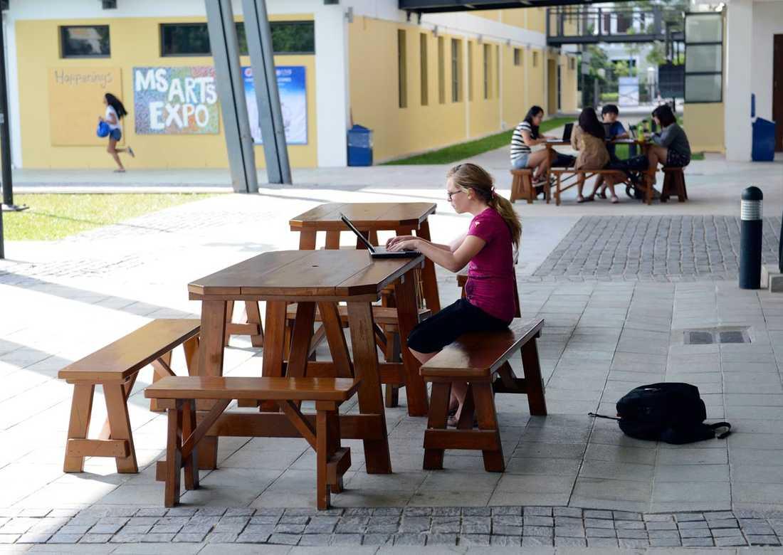 Linnea går på Internationella skolan i Hanoi. Det var där hon startade sitt projekt.