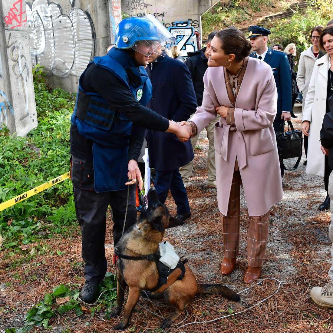 Kronprinsessan Victoria besökte under förra veckan Bosnien Hercegovina.