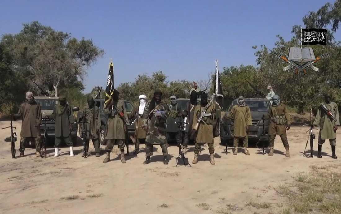Boko Haram-krigare på en bild tagen ur ett videoklipp från oktober 2014.