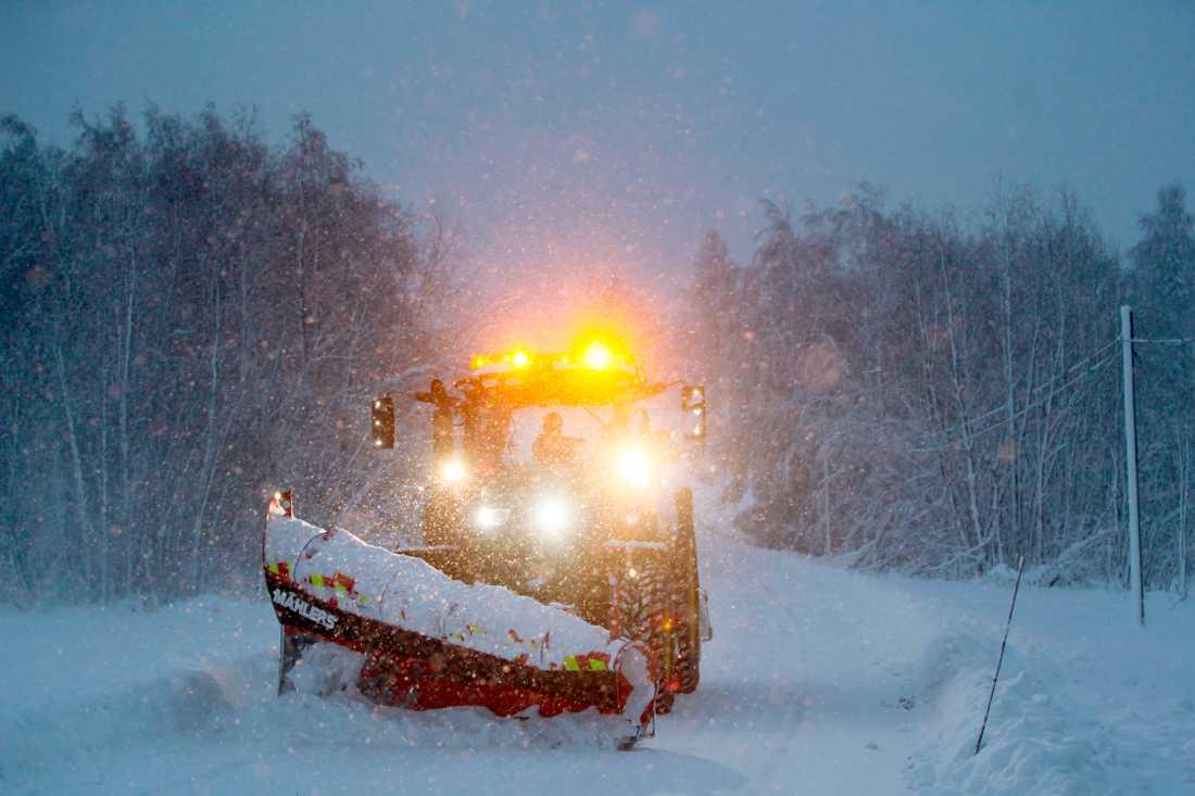 Snö i Västernorrland i mitten av januari.