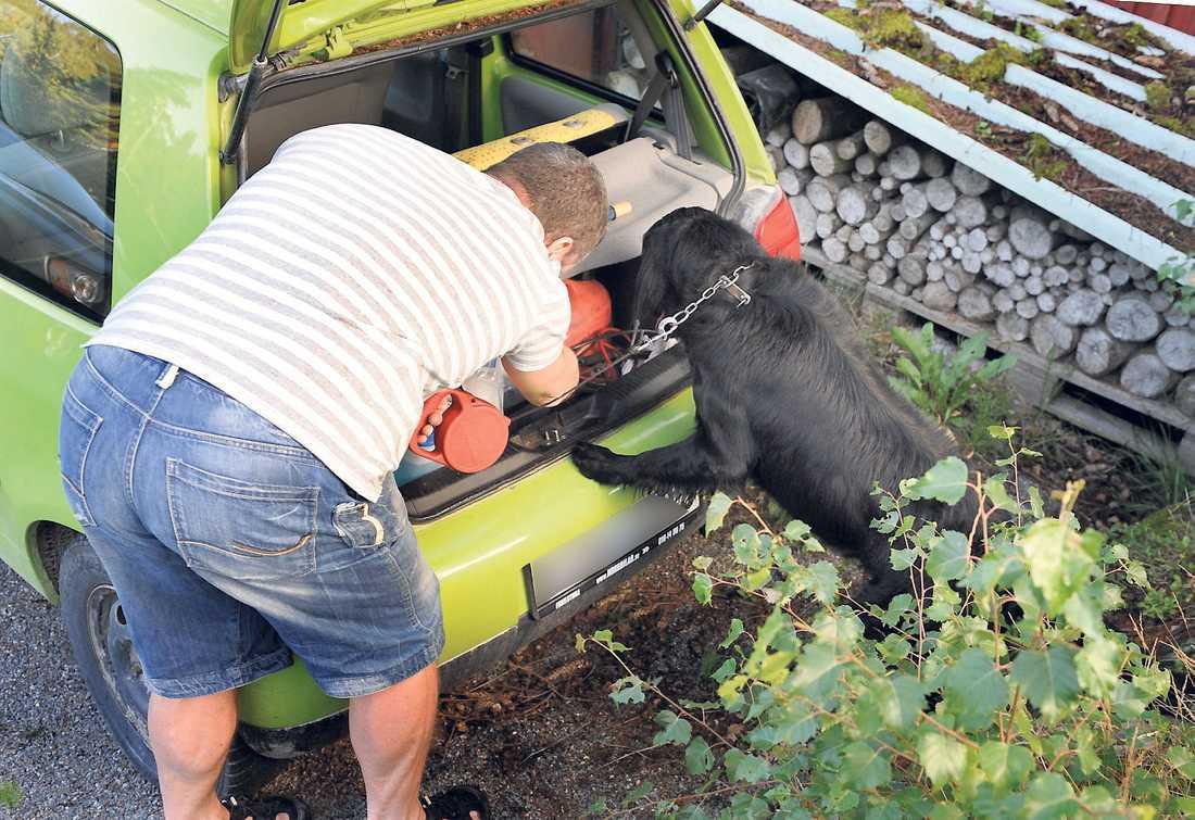 Hunden fick undersöka Marina Johanssons ena bil i jakt på eventuella spår.