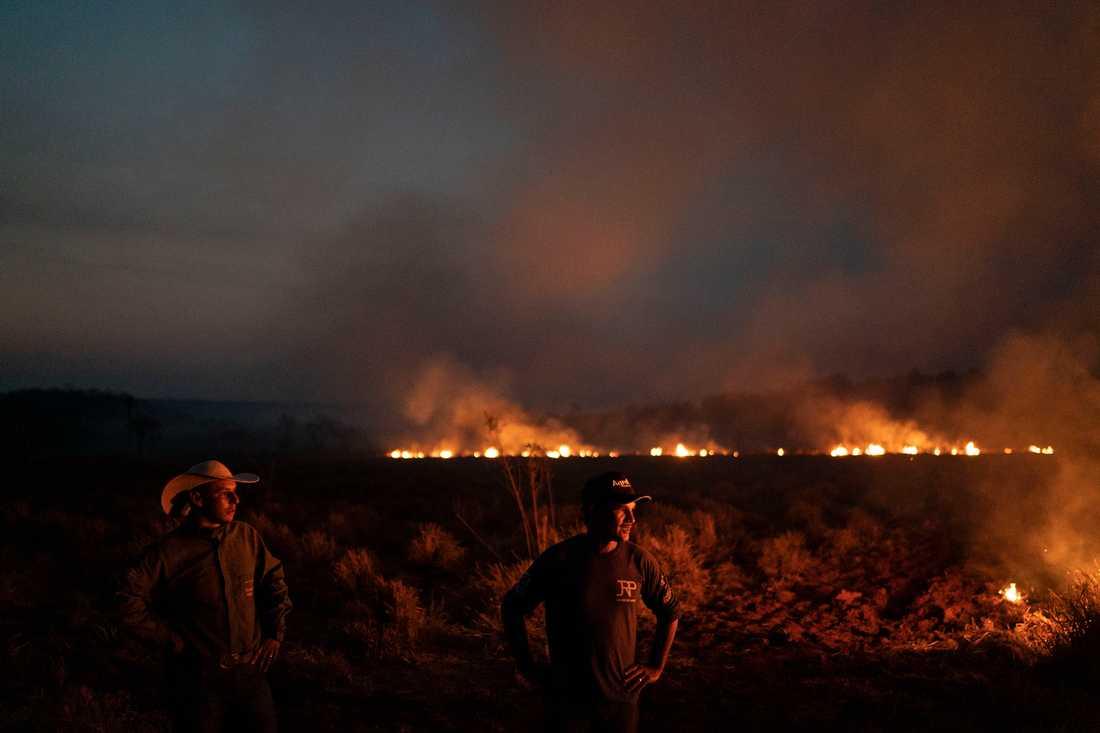 Bränder i Nova Santa Helena i Mato Grosso, Brasilien.
