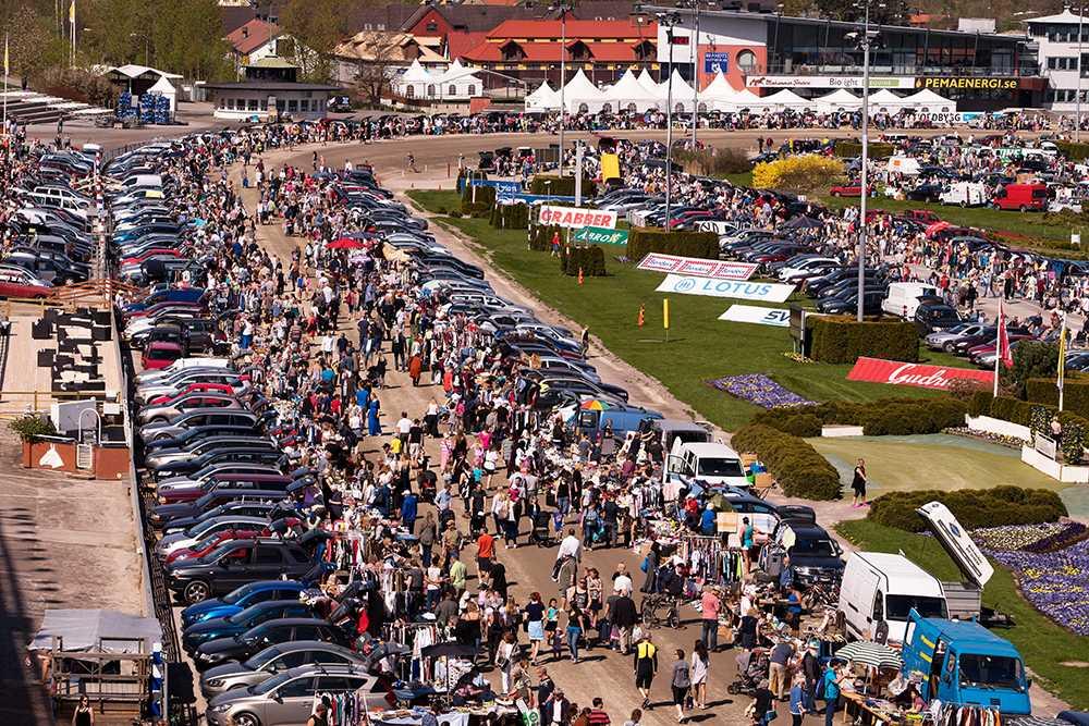 Ifjol var det drygt tusen bilar som öppnade bakluckan på Solvalla. I år kan det bli ännu fler. Intresset är stort.
