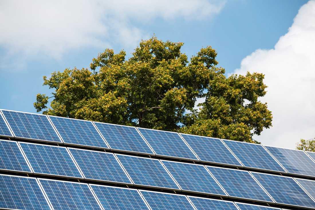 Regeringen satsar nästan 1 miljard kronor på stöd till solceller under 2018.
