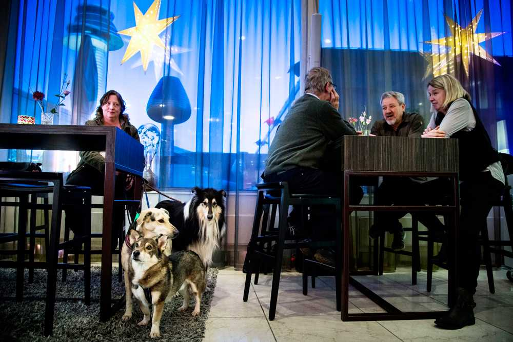 Hundarna dominerade i baren, heter Adrian, Baccus och Sally. Deras mattar heter Marie Johansson och Eva-Christine Bergström.