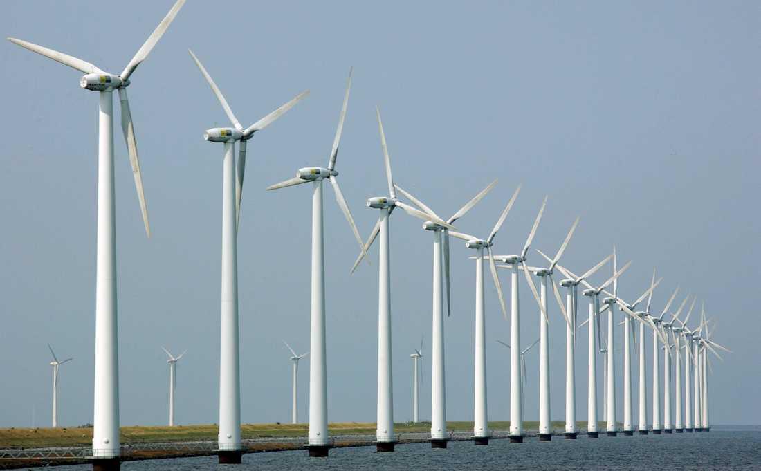 En vindkraftspark i Nederländska Dronten. Arkivbild.