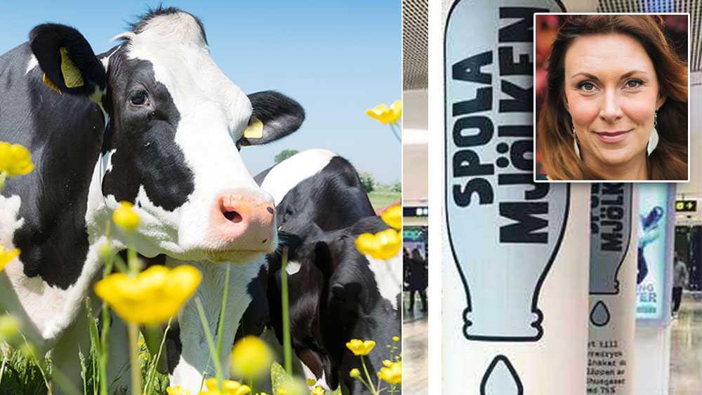 """Kampanjen är inte en attack mot svenska bönder, lika lite som """"Spola Kröken"""" var en attack mot svenska sprittillverkare. Den lyfter ett i längden ohållbart konsumtionsbeteende, skriver Linda Nordgren, communication manager på Oatly."""