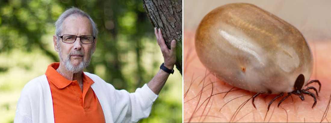 MÄRKTE INGENTING Sven Karlsson, 76, blev biten av en fästing och smittades av neo, en väldigt farlig bakterie – som gav Sven en blodpropp i benet.