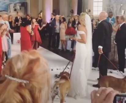 Hundarna var naturligtvis en del av firandet.