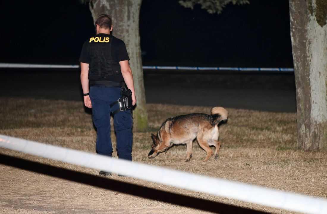 Polisens tekniker på plats efter en misstänkt våldtäkt.