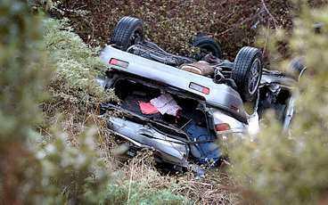 Tre personer fanns i bilen som körde av vägen i Nya Zeeland.