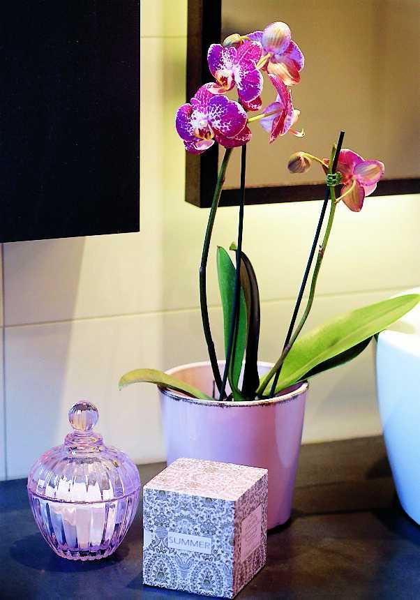 Glasdetaljer och exklusiva accessoarer fixar lyxkänslan i det stilrena rummet. Orkidéer trivs inte i direkt solljus, så ett badrum passar perfekt.