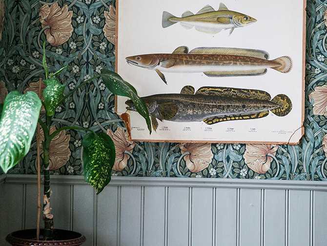 I matrummet är tapeten från Morris,  och matchas med tidstypisk bröstpanel målad med grå linoljefärg. Gammal skolplansch med fiskar.
