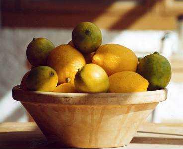 Tänk på att citronen ska vara mogen och ha ett glänsande klargult skal. Köp helst KRAV-odlade och tvätta alltid i ljummet vatten. Saften går lättast att pressa ur om citronen har rumstempearatur och rullas under tryck mot hårt underlag innan den pressas.