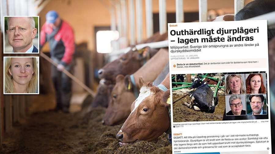 De allra flesta lever upp till det svenska djurskyddet och att det finns enskilda som inte gör det innebär inte att reglerna är dåliga. Replik från Jordbruksverket.