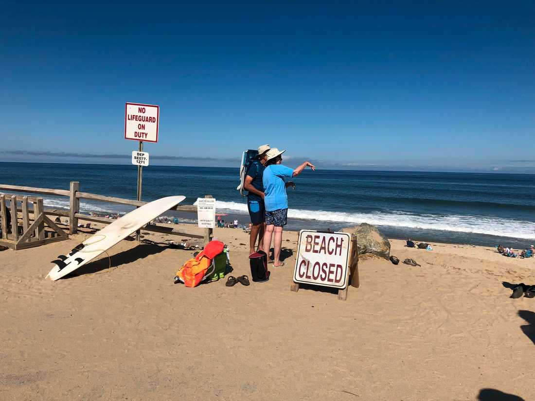 Den dödliga hajattacken inträffade vid Newcomb Hollow Beach i Wellfleet, Massachusetts.
