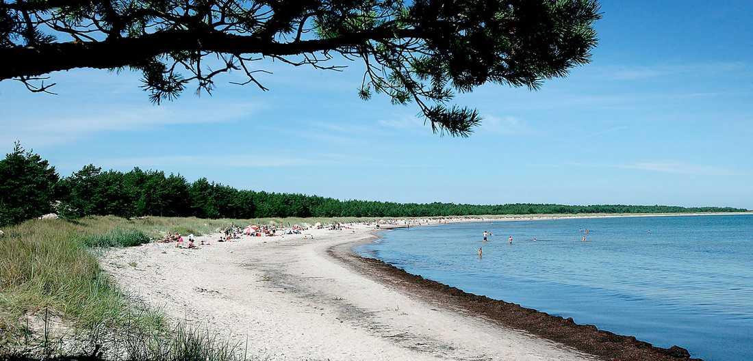 Den fina naturstranden Norsta aurar ligger på Fårö.