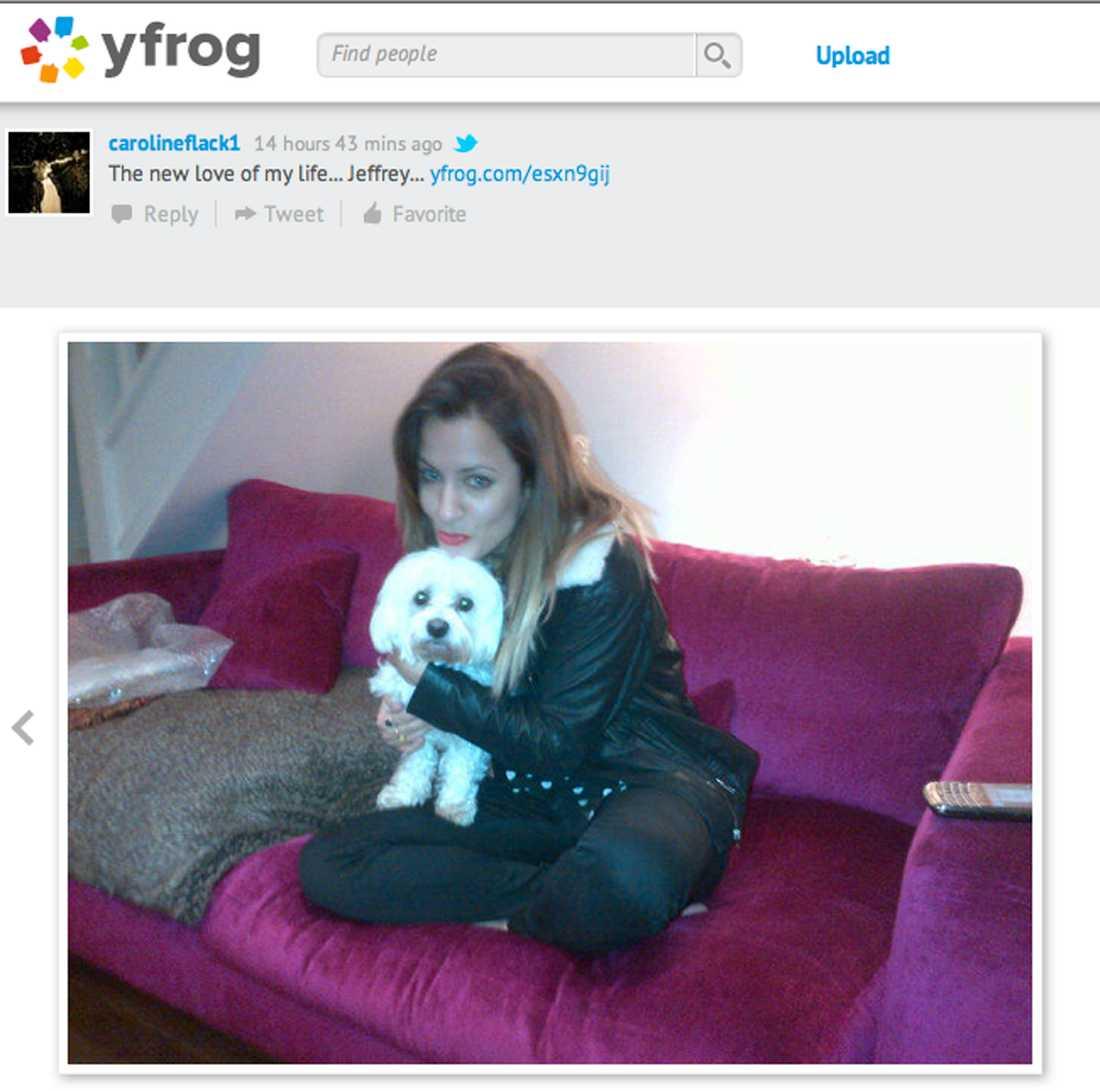 Harrys ex Exkroken, Caroline Flack skaffade en hundvalp efter den kapsejsade relationen med vår unga stjärna.