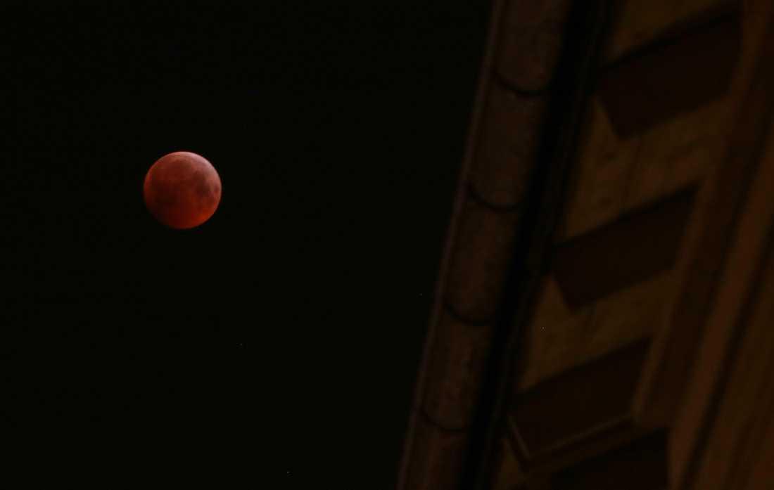 Tidigt på måndagsmorgonen inträffade en total månförmörkelse, där fullmånen var helt skuggad av jorden. Dessutom var det en så kallad supermåne. Här syns den över Stockholm.