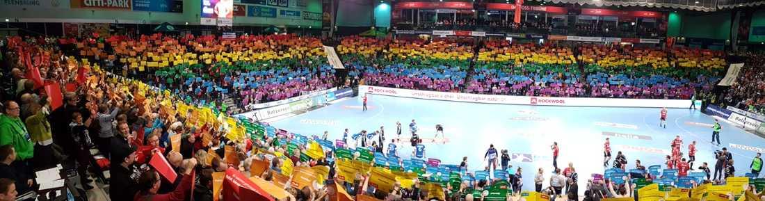 Flens Arena med ett enormt regnbågstifo under en match i handbollens Bundesliga.