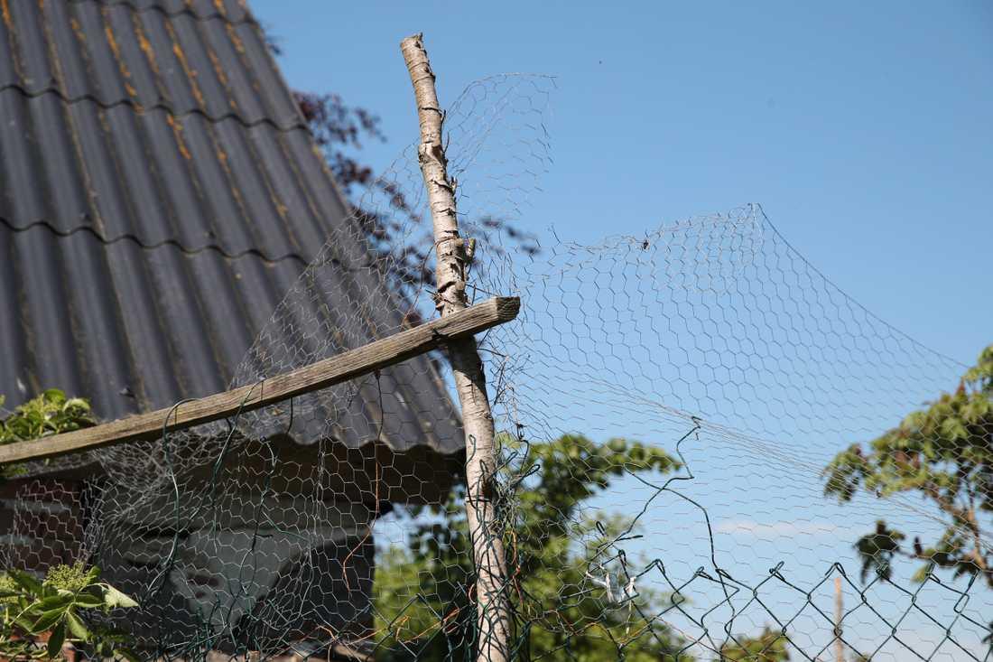 De fem barnen i Skåne – som är mellan 4 och 18 år – har hållits helt isolerade från omvärlden av sina föräldrar.