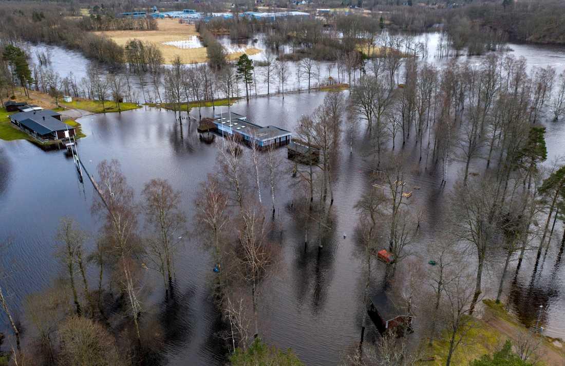 Lagan svämmar över sina breddar och byggnaderna står under vatten i Knäred. Översvämningsrisken längs Nissan och Lagan är stor.