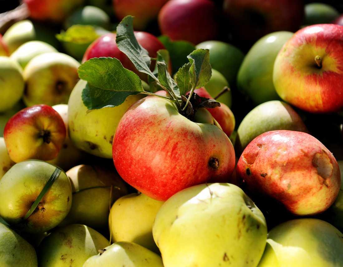 ÄT MER AV: Äpplen.
