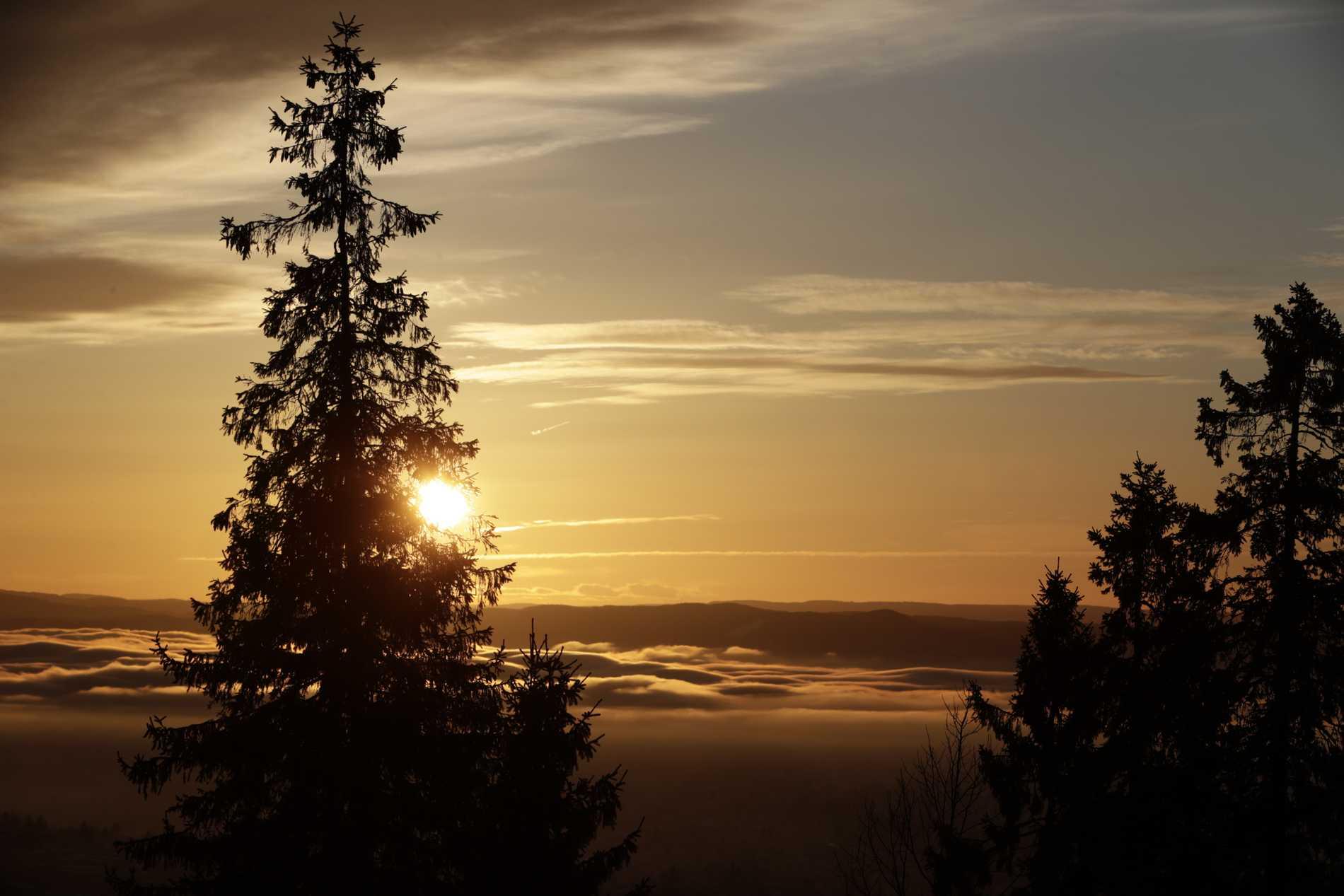 Vintersolstånd är årets kortaste dag – sedan går vi mot ljusare tider.