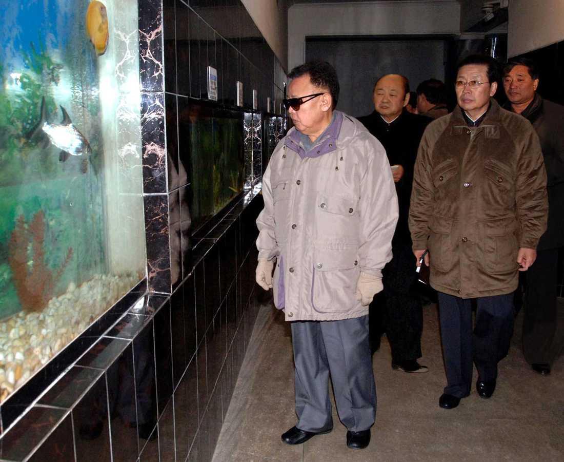 KIM TITTAR PÅ LEVANDE FISK Akvariefiskarna på zoo i Pyongyang hälsar vördnadsfullt på Den Käre Ledaren – som vet vad alla fiskar i Korea heter i förnamn.