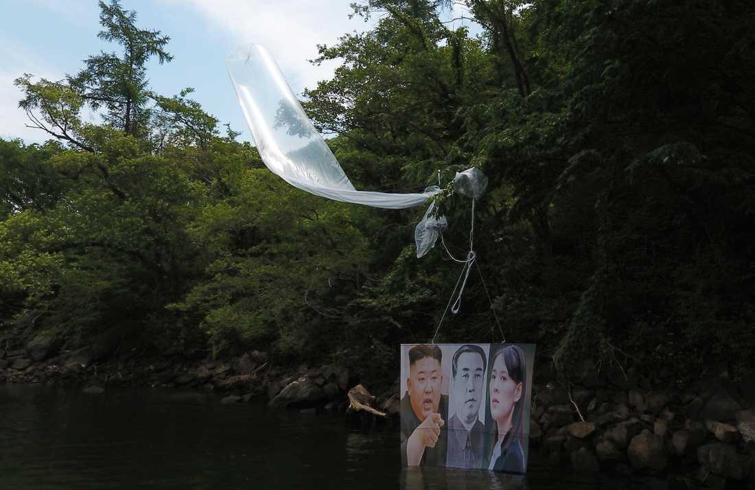 En ballong med bilder på Nordkoreas diktator Kim Jong-Un, tidigare diktatorn Kim Il-Sung och Kim Jong-Uns syster Kim Yo-Jong. Bilden är tagen i sydkoreanska Hongcheon. Enligt en sydkoreansk aktivist har hundratusentals flygblad skickats över gränsen mot Nordkorea under natten mot tisdagen.