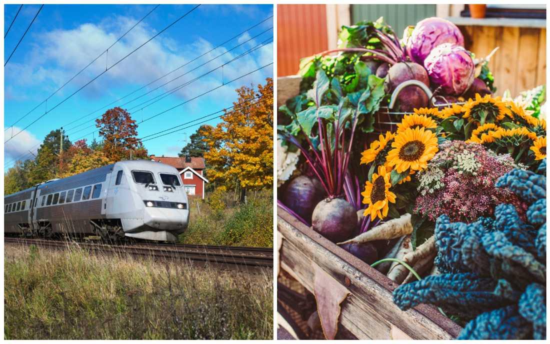 """Musterier, slottsträdgårdar och naturrestauranger perfekta för en """"weekend-getaway""""."""