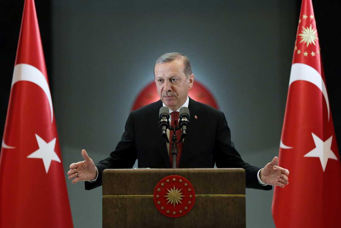 Turkiets president Tayyip Erdogans plan kunde ha skjutits ner av rebellers stridsplan under upproret, enligt nya uppgifter.