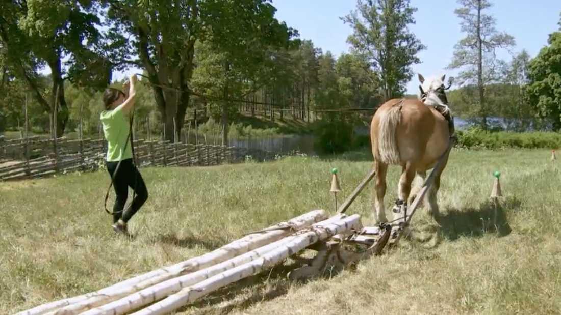 Christina Wight hade problem med att kommunicera med sin häst i avgörande tävlingen.