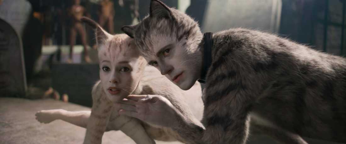 """Cats"" (2019)."