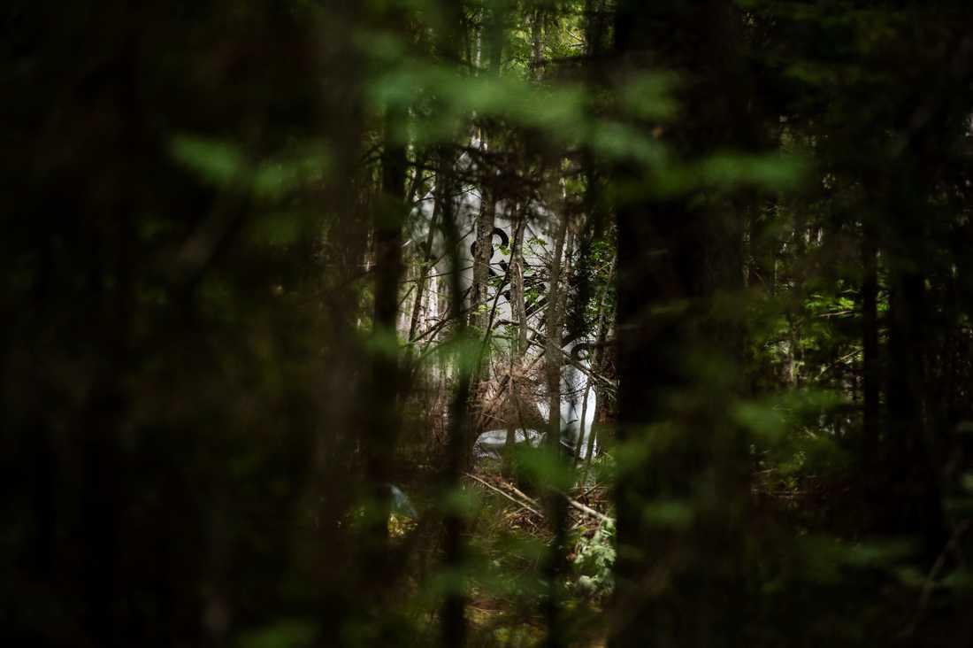 En del av flygplanet ligger kvar i skogen.