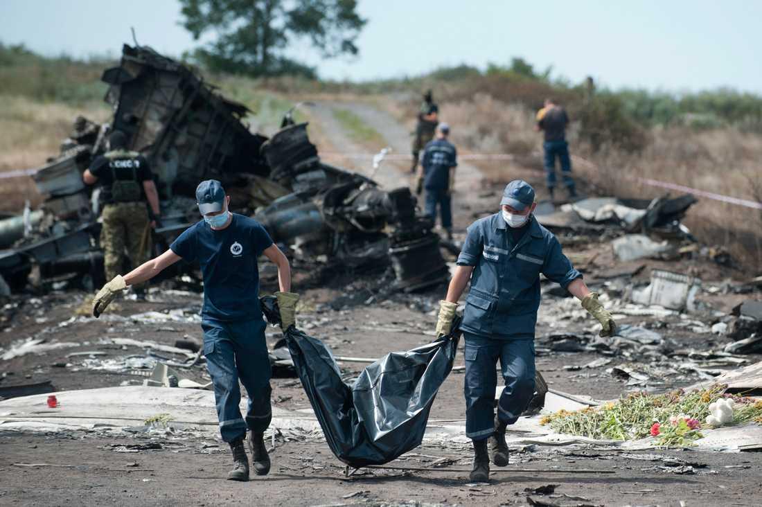 Den 20 juli 2014 störtade flygplanet MH17 efter att ha blivit beskjutet över rebellkontrollerat område i Ukraina. Arkivbild.