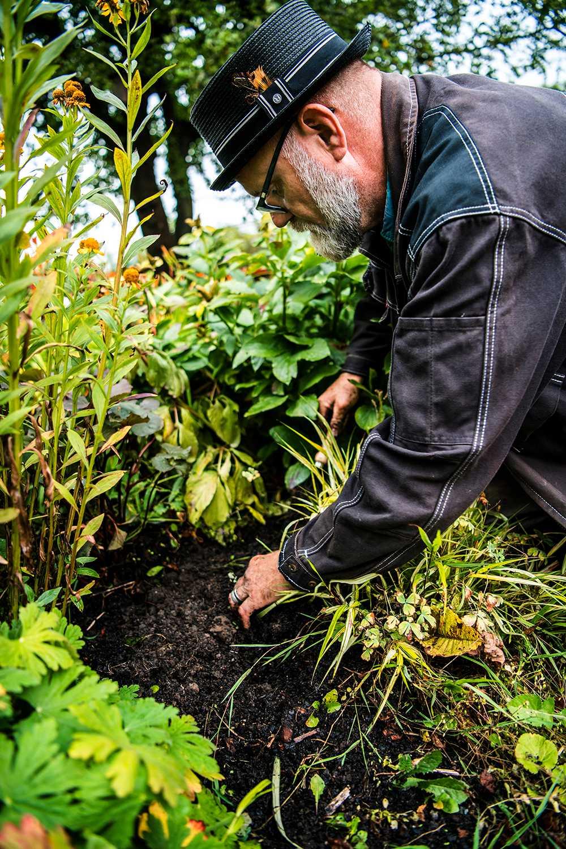 Fyll igen planteringshålet. Vattna om det är torrt och invänta den färgsprakande våren.
