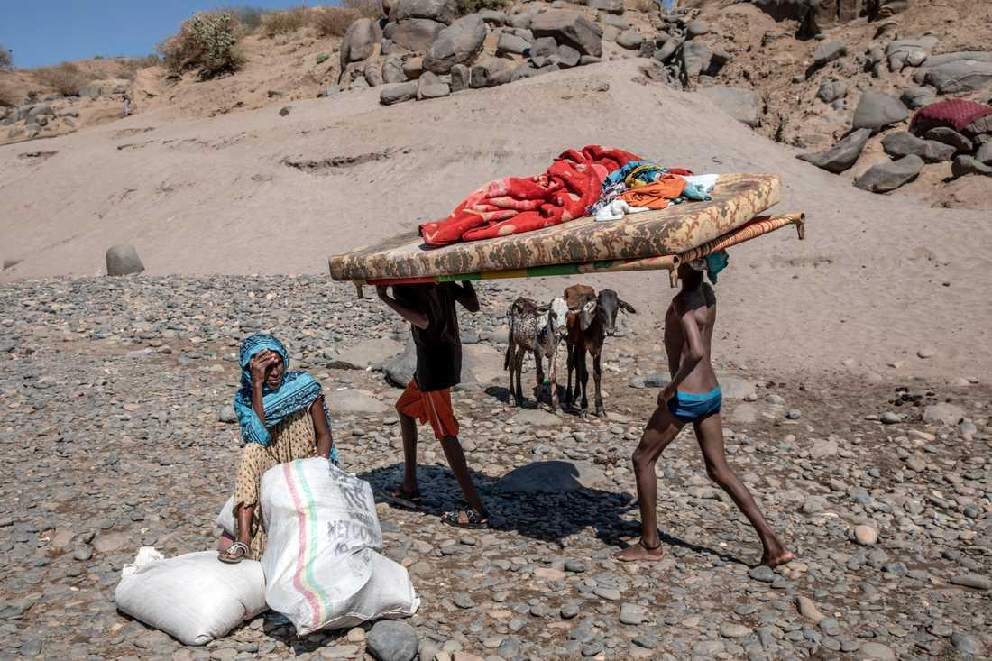 FN får, enligt ett etiopiskt dokument, tillgång att nå utsatta i Tigray.