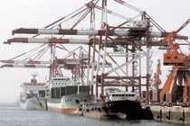 Stor hamn Hamnen i Qingdao är en av Kinas största. Hit kommer fisken för att fileas innan den skickas tillbaka till Europa.