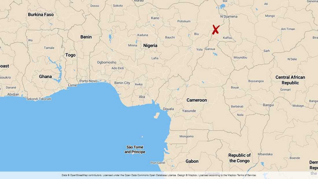 Minst sju har dödats i ett självmordsdåd i norra Kamerun.
