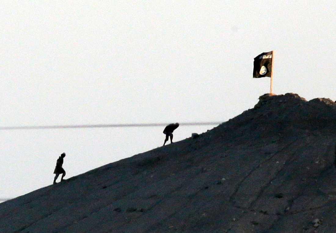 IS-medlemmar sätter sin flagga på ett backkrön utanför staden Kobane i Syrien 2014. Arkivbild.