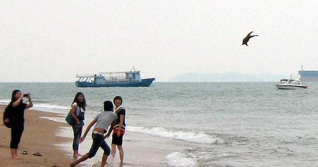 Gång på gång kastade den unge mannen ut sin hundvalp i havet.