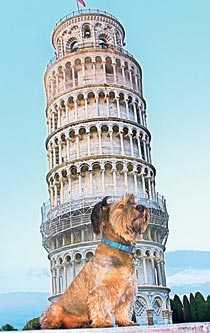 Oscar framför lutande tornet i Pisa.