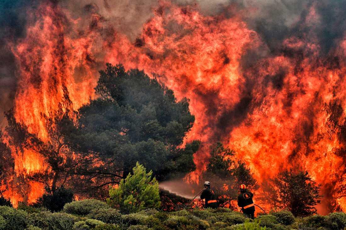Grekiska brandmän bekämpar bränderna
