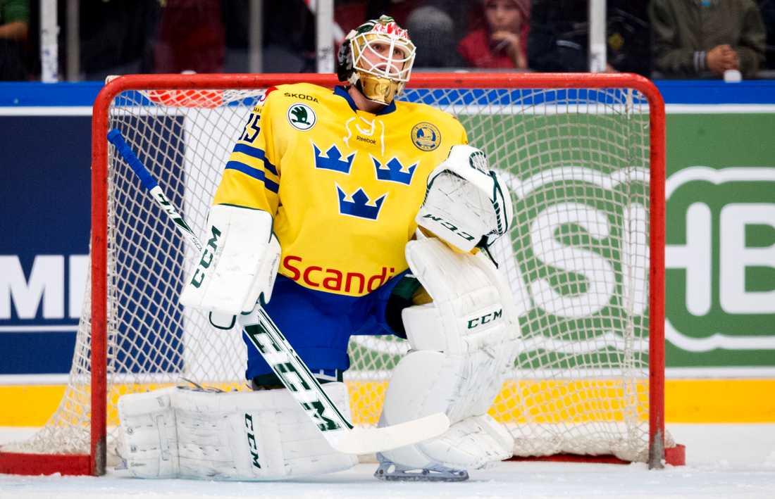 Fredrik Pettersson-Wentzel i landslagsdräkten 2015